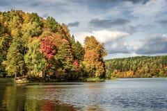 Autums-Bäume Lizenzfreie Stockbilder