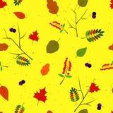 Autums-Blätter Stockbild