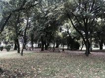 Autums-Park Stockbilder