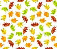 Autunm leaves pattern royalty free stock photography