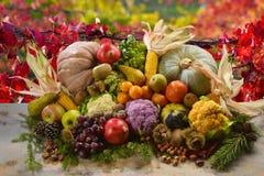 Autunnale di Frutta e verdura di stagione Fotografia Stock Libera da Diritti