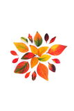 autunno Fotografia Stock