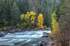 Autunno al fiume di Wenatchee fotografia stock