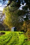 Autunno, alberi ed acqua Fotografia Stock Libera da Diritti