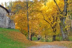 Autunno all'Au di Lienz dei giardini di Schloss Bruck Immagine Stock Libera da Diritti