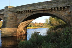 Autunno attraverso l'arco del ponte Immagine Stock Libera da Diritti