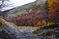 Autunno/caduta in Parque Nacional Torres del Paine, Cile Immagini Stock Libere da Diritti