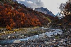 Autunno/caduta in Parque Nacional Torres del Paine, Cile Fotografia Stock