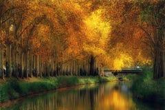 Autunno a Canal du Midi, Tolosa, Francia fotografia stock libera da diritti