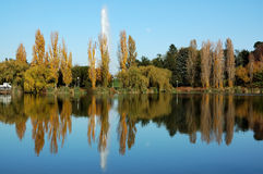 Autunno a Canberra Immagine Stock