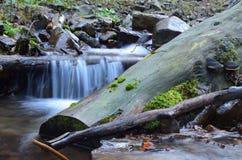 Autunno in Carpathians Fotografia Stock