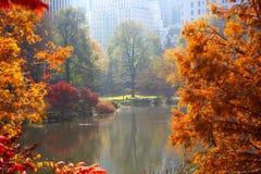 Autunno in Central Park Fotografie Stock Libere da Diritti