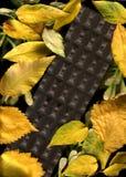 Autunno del cioccolato Fotografie Stock