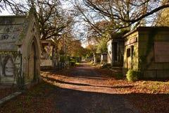 Autunno del percorso del cimitero Fotografie Stock Libere da Diritti