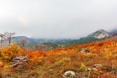 Autunno della Crimea della montagna Immagini Stock