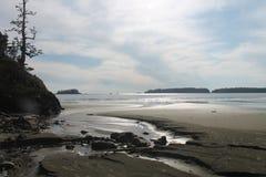 Autunno di caduta della spiaggia di deformazione dell'insenatura di erosione Fotografie Stock Libere da Diritti