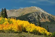 Autunno 2 di Colorado Fotografia Stock