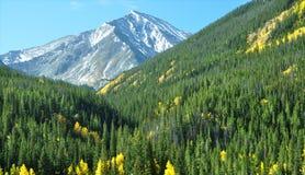 Autunno 3 di Colorado Fotografie Stock
