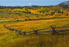 Autunno 5 di Colorado Immagini Stock Libere da Diritti