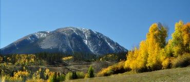 Autunno 7 di Colorado Fotografia Stock