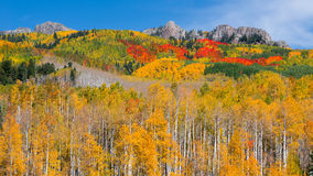 Autunno di Colorado Fotografie Stock