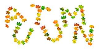 AUTUNNO di parola composto di foglie di acero di autunno fotografie stock libere da diritti