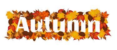 Autunno di parola coperto in foglie autunnali Fotografia Stock Libera da Diritti