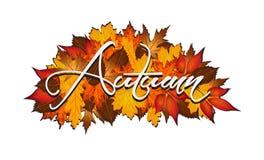 Autunno di parola coperto in foglie autunnali Immagine Stock