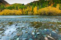 Autunno dorato in Arrowtown ed in fiume Fotografia Stock Libera da Diritti