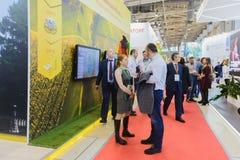 Autunno dorato di agro mostra, russo immagine stock libera da diritti
