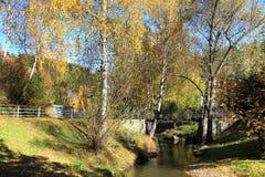 Autunno dorato nella regione di Altai in Russia Bello paesaggio - strada nella foresta di autunno immagini stock