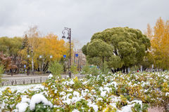 Autunno e la prima neve sulla via Immagine Stock