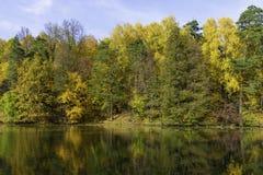 Autunno, foresta sui precedenti dello stagno fotografie stock