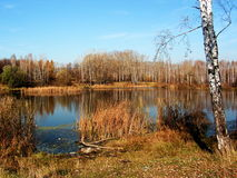 Autunno. Lago Fotografie Stock