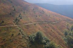 Autunno in montagne carpatiche Fotografia Stock Libera da Diritti