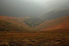 Autunno in montagne carpatiche Fotografia Stock