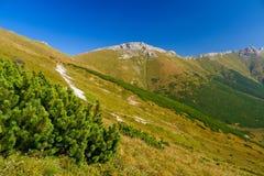 Autunno in montagne di Tatry Bielskie Fotografia Stock