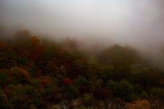 Autunno nebbioso e nuvoloso alto nelle montagne Immagini Stock Libere da Diritti