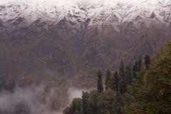 Autunno nel Caucaso Fotografie Stock Libere da Diritti