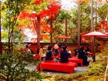 Autunno nel Giappone Fotografie Stock Libere da Diritti