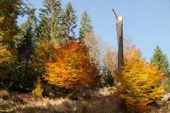 Autunno nel legno nelle colline pedemontana delle montagne di Jeseniky Fotografia Stock Libera da Diritti