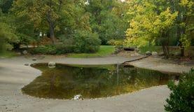 Autunno nel parco della città con un lago Immagine Stock Libera da Diritti
