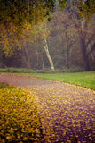 Autunno nel parco di Goldsworth in Woking Fotografia Stock