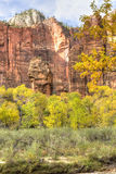 Autunno nel tempio di Sinawava Fotografia Stock