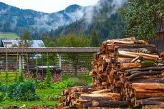 Autunno nel villaggio, Slovenia Fotografie Stock