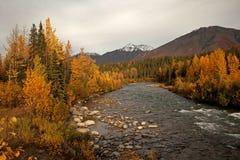 Autunno nell'Alaska Immagini Stock Libere da Diritti