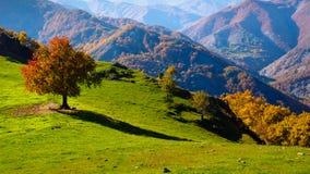 Autunno nella montagna bulgaria Immagini Stock Libere da Diritti