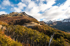 Autunno nella Patagonia Darwin di Cordigliera, Tierra del Fuego Immagini Stock