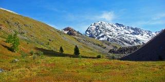 Autunno nelle montagne di Altai immagini stock libere da diritti