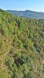 Autunno nelle montagne di Caucaso, pendii boscosi con fogliame variopinto Fotografia Stock Libera da Diritti